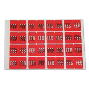 FSI Month label February